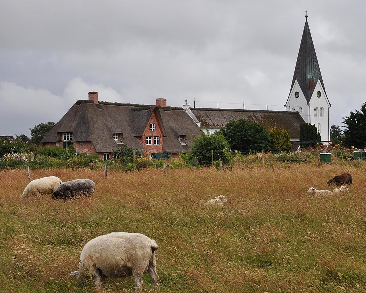 Kirche Amrum